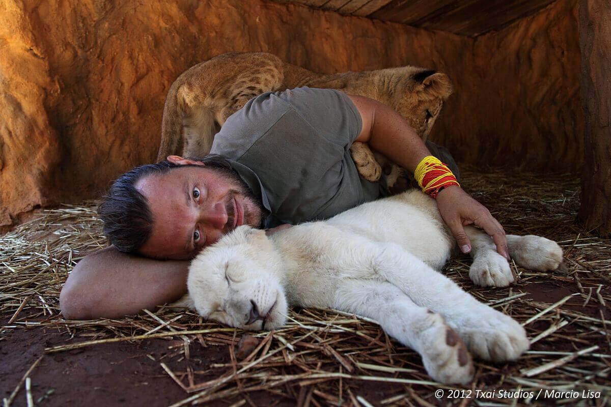 2012_africa_gauteng_lion park 1_marcio lisa